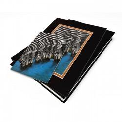 """Zebras At The Watering Hole"" Gift Set, artwork by Dexter Griffin"